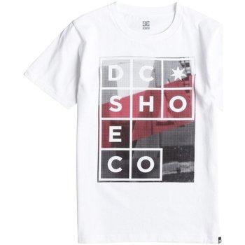 Abbigliamento Unisex bambino T-shirt maniche corte DC Shoes T-Shirt bambino La Panel Bianco