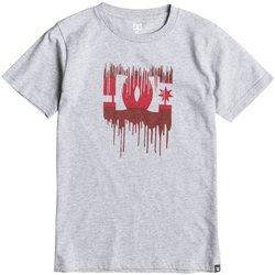 Abbigliamento Unisex bambino T-shirt maniche corte DC Shoes T-Shirt bambino Melting Grigio