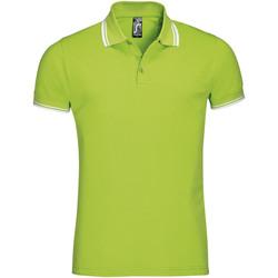 Abbigliamento Uomo Polo maniche corte Sols PASADENA MODERN MEN Verde