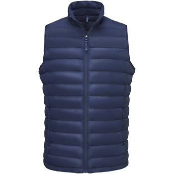 Abbigliamento Uomo Piumini Sols WILSON BW FEATHERS Azul