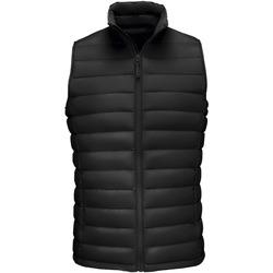 Abbigliamento Uomo Piumini Sols WILSON BW FEATHERS Negro