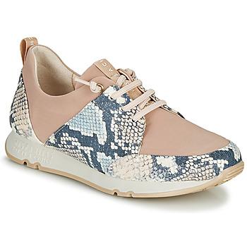 Scarpe Donna Sneakers basse Hispanitas KIOTO Beige / Blu