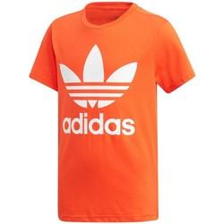 Abbigliamento Unisex bambino T-shirt maniche corte adidas Originals T-shirt Bambino Trefoil Rosso