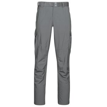 Abbigliamento Uomo Pantalone Cargo Columbia SILVER RIDGE II CARGO PA Grigio