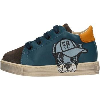 Scarpe Bambino Sneakers basse Falcotto - Sneaker azzurro NINO AZZURRO