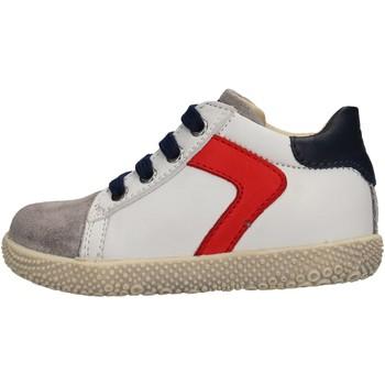 Scarpe Bambino Sneakers Falcotto - Polacchino grigio/bco HYSO GRIGIO