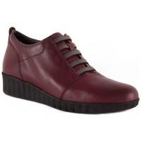 Scarpe Donna Derby Barritas Zapatos  Autres