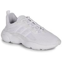 Scarpe Uomo Sneakers basse adidas Originals HAIWEE Bianco