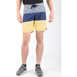 Abbigliamento Uomo Shorts / Bermuda DC Shoes DC SEDYBS03069-BYB0 Multicolor
