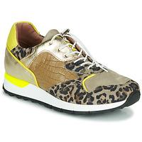 Scarpe Donna Sneakers basse Mjus CAST Kaki / Leopard