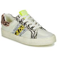 Scarpe Bambina Sneakers basse Gioseppo TIRRENIA Bianco / Giallo / Argento