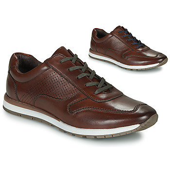 Scarpe Uomo Sneakers basse André SPORTCHIC Marrone