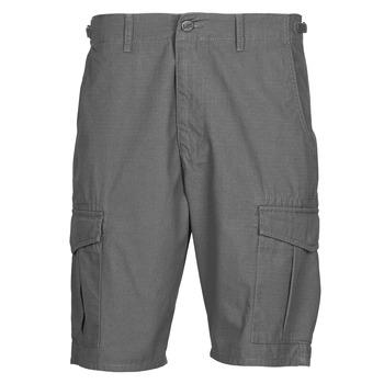 Abbigliamento Uomo Shorts / Bermuda Lee CARGO SHORT FATIGUE Steel / Grigio