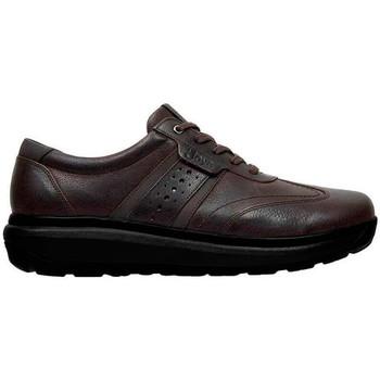 Scarpe Uomo Sneakers basse Joya DAVID M BROWN
