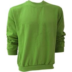 Abbigliamento Uomo Felpe Anvil 71000 Verde mela