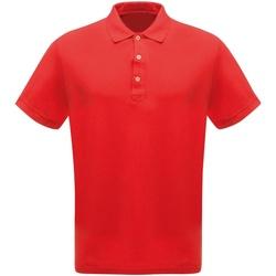 Abbigliamento Uomo Polo maniche corte Regatta  Rosso