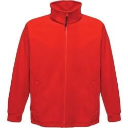 Abbigliamento Uomo Felpe in pile Regatta  Rosso classico