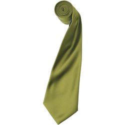Abbigliamento Uomo Cravatte e accessori Premier Satin Polvere