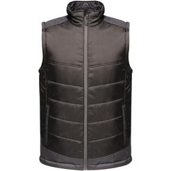 Abbigliamento Uomo Piumini Regatta  Nero/Grigio