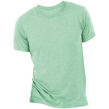 Abbigliamento Uomo T-shirt maniche corte Bella + Canvas CA3413 Menta