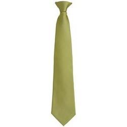 Abbigliamento Uomo Cravatte e accessori Premier PR785 Erba