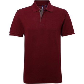 Abbigliamento Uomo Polo maniche corte Asquith & Fox AQ012 Bordeaux/Carbone