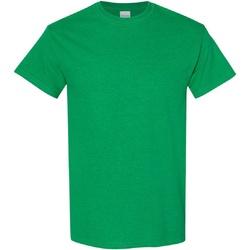 Abbigliamento Uomo T-shirt maniche corte Gildan Heavy Verde irlandese vintage