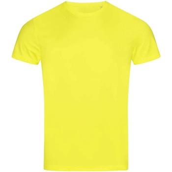 Abbigliamento Uomo T-shirt maniche corte Stedman  Giallo fosforo