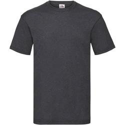 Abbigliamento Uomo T-shirt maniche corte Fruit Of The Loom 61036 Erica grigio