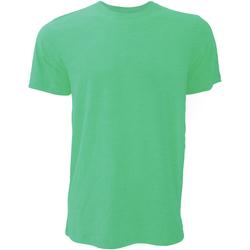 Abbigliamento Uomo T-shirt maniche corte Bella + Canvas CA3001 Verde Kelly screziato