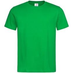 Abbigliamento Uomo T-shirt maniche corte Stedman  Verde kelly