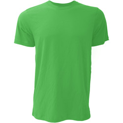 Abbigliamento Uomo T-shirt maniche corte Bella + Canvas CA3001 Verde Kelly