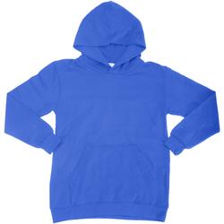 Abbigliamento Unisex bambino Felpe Sg SG27K Blu reale