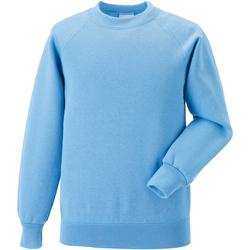 Abbigliamento Unisex bambino Felpe Jerzees Schoolgear 7620B Azzurro cielo