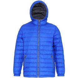 Abbigliamento Uomo Piumini 2786 TS016 Blu Reale/Grigio
