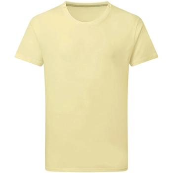 Abbigliamento Uomo T-shirt maniche corte Sg Perfect Violetto