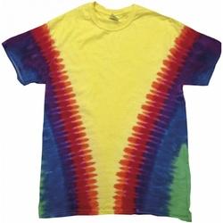 Abbigliamento T-shirt maniche corte Colortone TD05M Arcobaleno