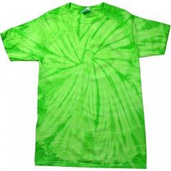 Abbigliamento Unisex bambino T-shirt maniche corte Colortone Spider Lime