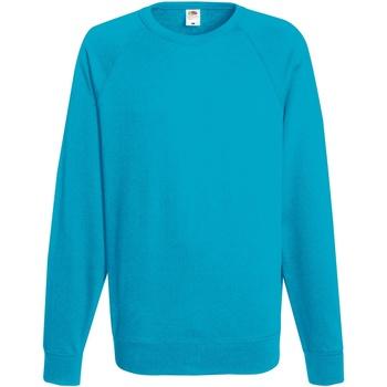 Abbigliamento Uomo Felpe Fruit Of The Loom 62138 Azzurro