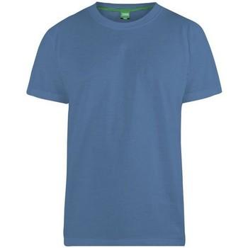 Abbigliamento Uomo T-shirt maniche corte Duke  Azzurro foglia di té