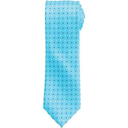 Abbigliamento Uomo Cravatte e accessori Premier Squares Turchese