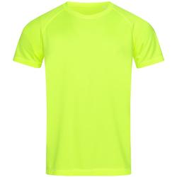 Abbigliamento Uomo T-shirt maniche corte Stedman  Giallo