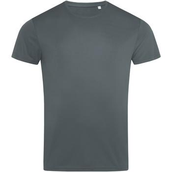 Abbigliamento Uomo T-shirt maniche corte Stedman  Grigio