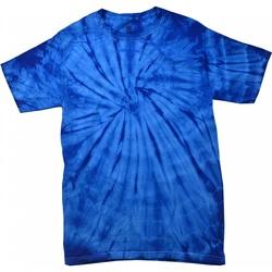 Abbigliamento Unisex bambino T-shirt maniche corte Colortone Spider Blu reale