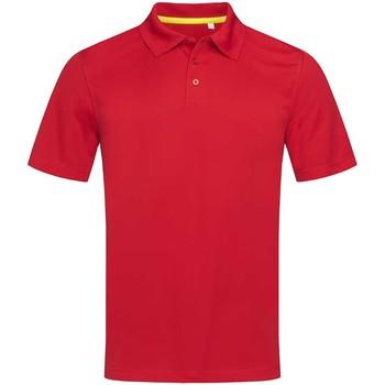 Abbigliamento Uomo Polo maniche corte Stedman  Rosso