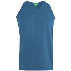 Abbigliamento Uomo Top / T-shirt senza maniche Duke  Foglia di tè