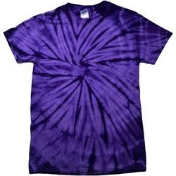 Abbigliamento Unisex bambino T-shirt maniche corte Colortone Spider Viola