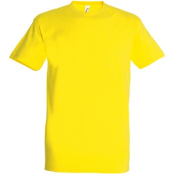 Abbigliamento Uomo T-shirt maniche corte Sols 11500 Giallo Limone