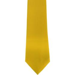 Abbigliamento Uomo Cravatte e accessori Premier Satin Limone