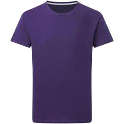 Abbigliamento Uomo T-shirt maniche corte Sg Perfect Viola